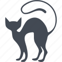 animal, cat, kitty, veterinary icon