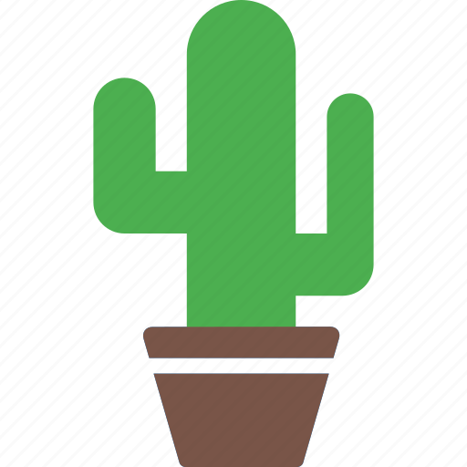 cactus, flowerpot, nature, plant, pot, tree icon