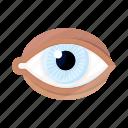 correction, eye, eyesight, health, lens, medicine, ophthalmology