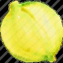 food, fruit, fruits, lemon, sicilian, watercolor, watercolors icon