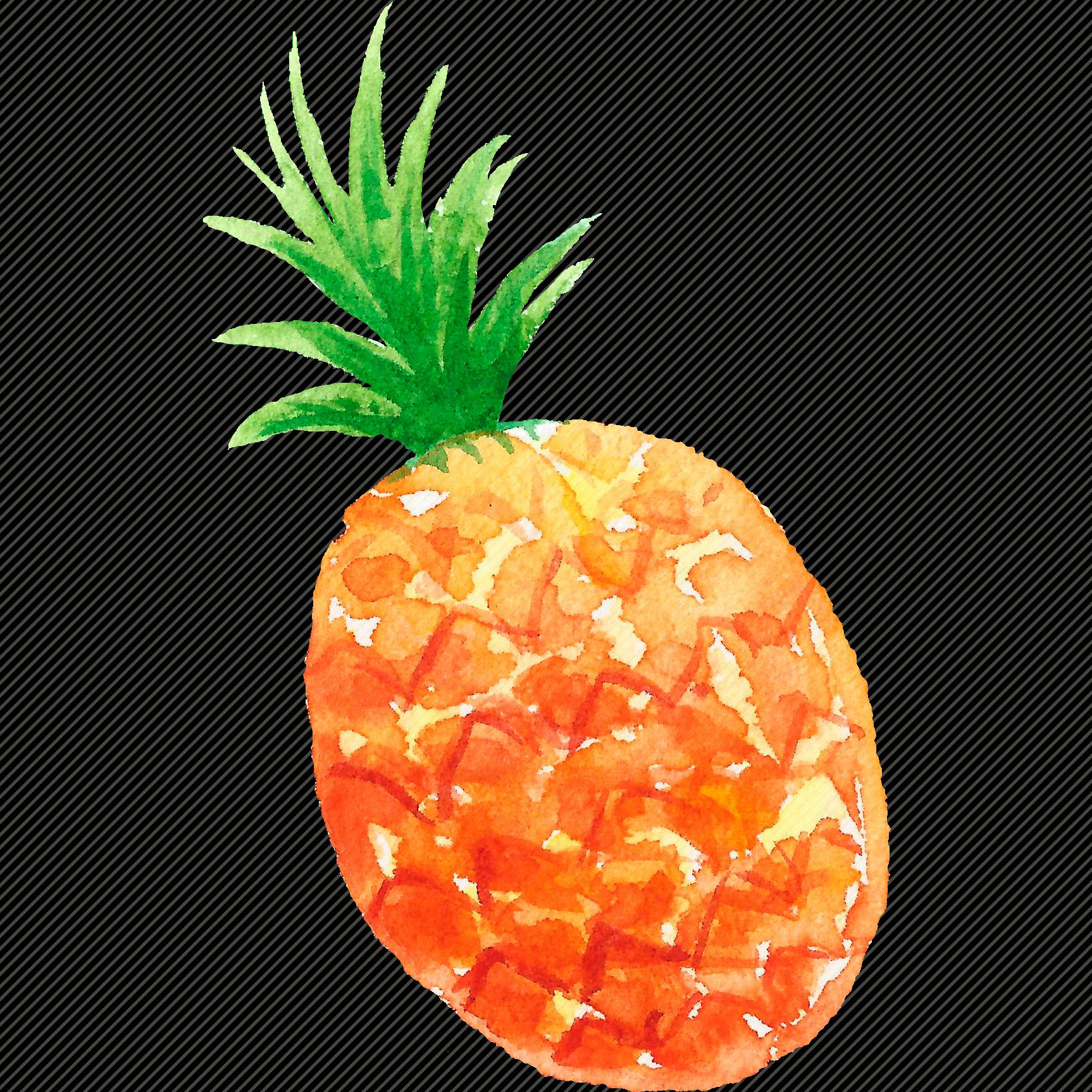 cuisine food fruit fruits pineapple watercolor