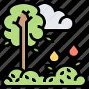 environment, nature, season, spring, trees icon