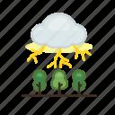 forecast, lightning, nature, thunder, thunderbolt, weather