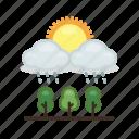 cloud, cloudy, nature, plant, rain, rainy, weather