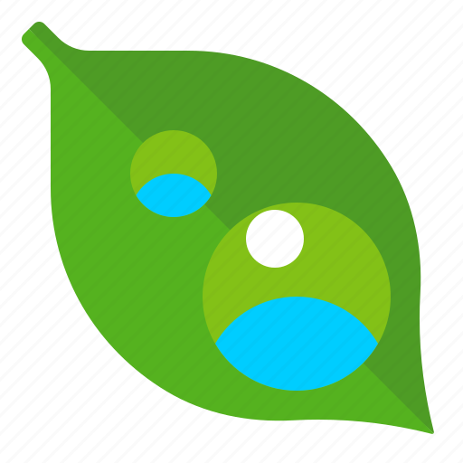 dew, drop, leaf, weather icon