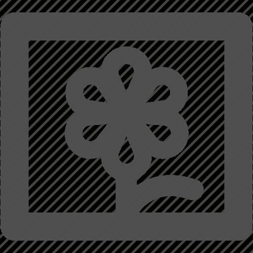 app, flower, gallery, image, web, website icon