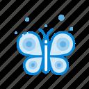 butterfly, creative, design