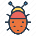 bug, insect, malware, virus icon