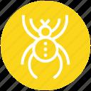 antivirus, bug, protect, security bug, spider, spyware, virus icon