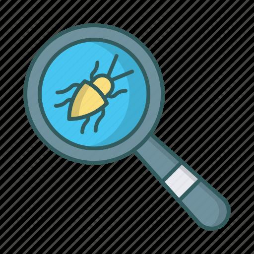 bug, dev, qa, search, testing, virus icon