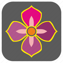 bud, buttercup, color, flower, nature, ranunculus, rose icon