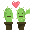 cactus, couple, grow, love, plant