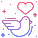 animal, dove, heart, wedding icon