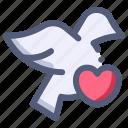 bird, dove, heart, love, wedding