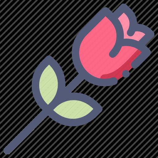 flower, love, romance, rose, valentine icon