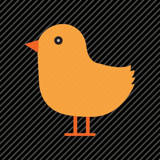 baby duck, bird, duck, shower icon