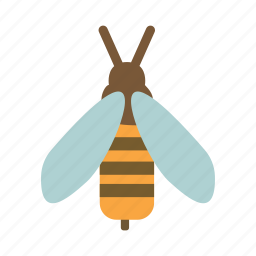 bee, bug, honey, insect icon