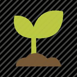 flower, garden, gardening, soil, sprout icon