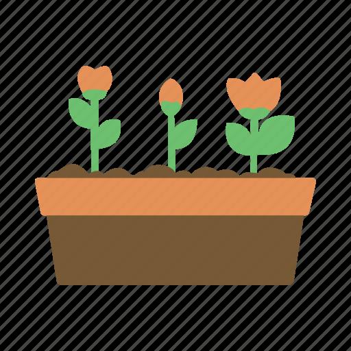 flower, flowers, garden, gardening, plant, soil icon