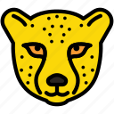wild, face, animal, zoo, leopard icon