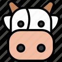 farm, face, animal, milk, cow