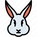 carrot, face, bunny, animal, rabbit