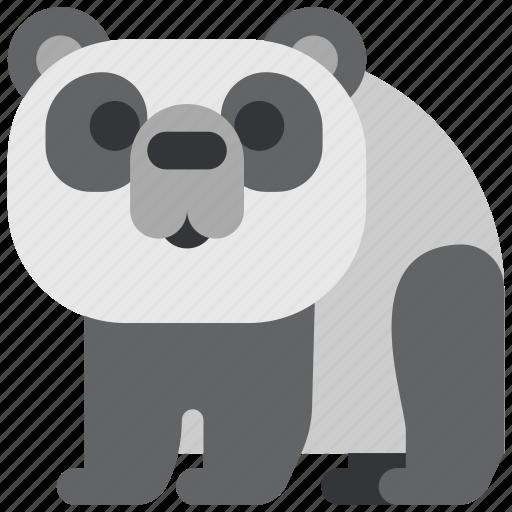 animal, bear, beast, fauna, panda, wild, wildlife icon
