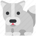 animal, beast, fauna, wild, wildlife, wolf, zoo icon