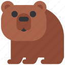 animal, bear, beast, fauna, wild, wildlife, zoo icon