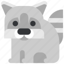 animal, beast, fauna, raccoon, wild, wildlife, zoo icon