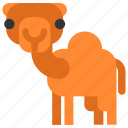 animal, beast, camel, fauna, wild, wildlife, zoo icon