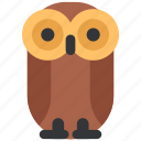 animal, beast, bird, fauna, owl, wild, wildlife icon