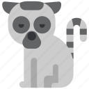 animal, beast, fauna, lemur, wild, wildlife, zoo icon