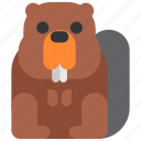 animal, beast, beaver, fauna, wild, wildlife, zoo icon