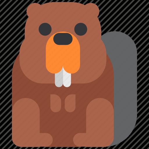 animal, beast, beaver, fauna, wild, wildlife, zoo icon