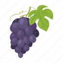 berry, blue, bunch, fruit, grape, leaf icon