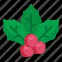 christmas, festival, holiday, mistletoe, winter icon