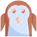 animal, cold, iceberg, penguin, snow, winter, xmas
