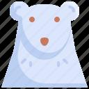 animal, animals, bear, cold, iceberg