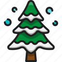 pine, tree, winter, wood, christmas, forest, evergreen