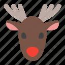 animal, caribou, christmas, deer, reindeer, winter