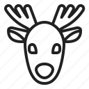 animal, caribou, christmas, deer, reindeer, winter