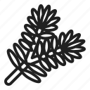 christmas, fir, leaf, pine, plants, tree, winter icon