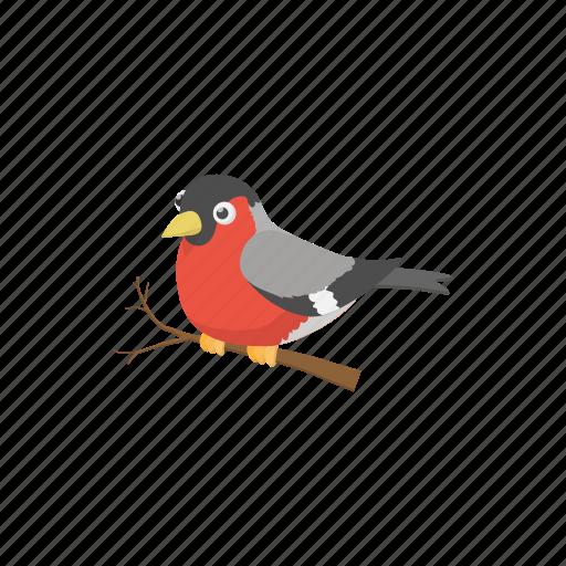 bird, bullfinch, cartoon, holiday, nature, sign, winter icon