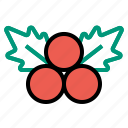 christmas, decoration, mistletoe icon