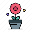 day, flower, growth, plant, women, womens icon
