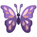 animal, butterfly, insect, wings, zoology icon