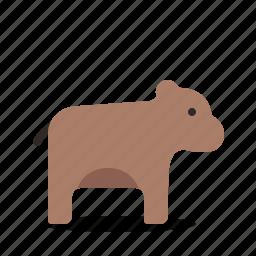 animals, bear, cartoon, cute icon