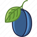 food, fruit, garden, leaf, plum, vitamins, yumminky icon