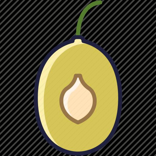 core, food, fruit, garden, plum, vitamins, yumminky icon